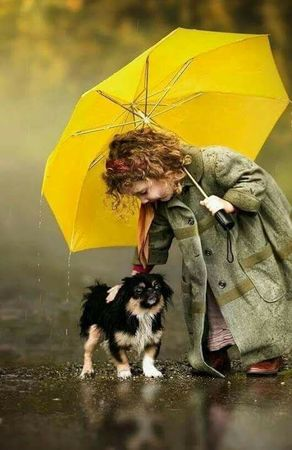 Dog Care During Monsoon