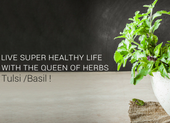 Live Super Healthy Life With The Queen Of Herbs - Tulsi