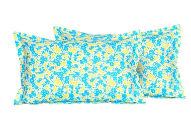 //d27afjhe0vu8x.cloudfront.net/store_5634/products/58021/PILLOW79_medium.jpg